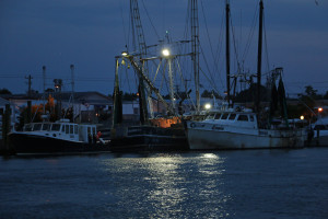 Nighttime Boats